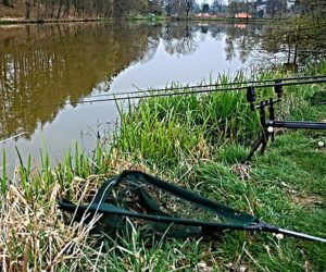 Carp Fishing Rods – Know what you are looking for