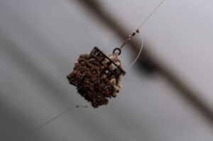 What is Feeder Fishing - Cage Feeder