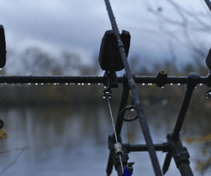Carp Fishing in the Rain – Increase your catch rate!