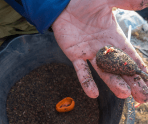 What is a Method Feeder? – Everything you need to know!