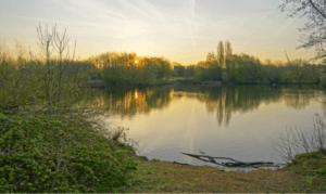 Summer carp fishing tips - sunrise over carp venue