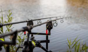 What is carp fishing - standard carp fishing rod