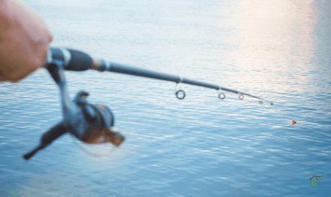 Float Fishing for Carp - Carp fishing rod and reel