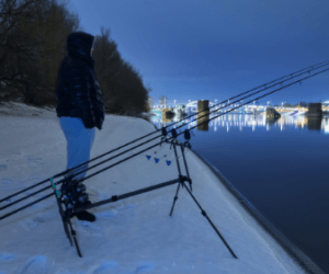 Top 5 Winter Carp Fishing Rigs and Tips