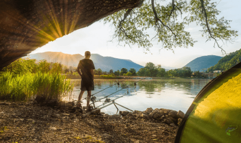 How does the Weather Affect Carp Fishing - Sunny lake with carp fisherman