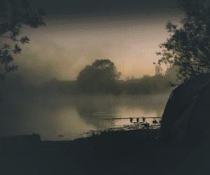 Night Fishing for Carp – Full Guide