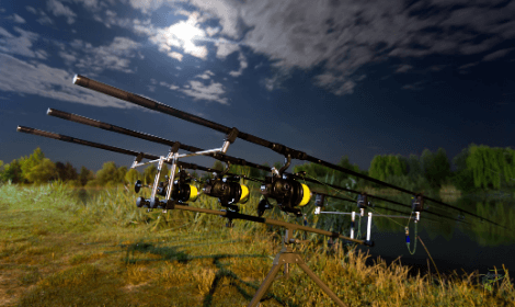 Do Moon Phases Affect Carp fishing - carp rods at night with moon overhead