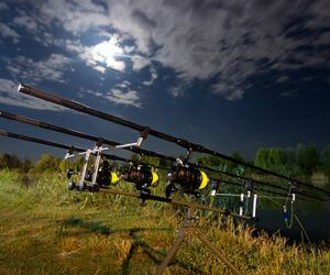 Do Moon Phases Affect Carp Fishing?- A Myth or Not?