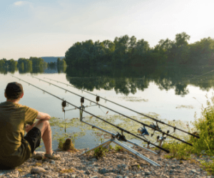 How to Catch Carp from a River? – Simple Guide