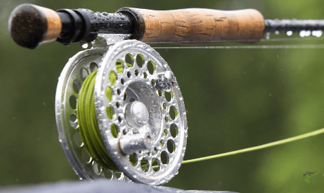 How to fly fish for carp - Fly Rod and Reel with Rain Drops