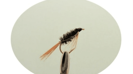 How to fly fish for carp - nymph