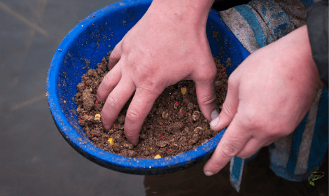 how to catch carp from a river- mixed carp bait for feeding