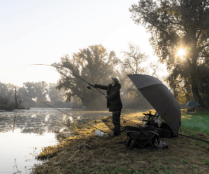 What is the Best Season for Carp Fishing? – Find Out Here