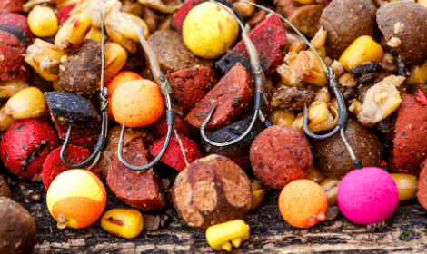 How to catch carp in spring - Bright pop ups on hooks