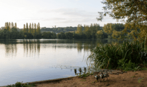 How to catch carp in spring - carp rods in front of carp water in spring