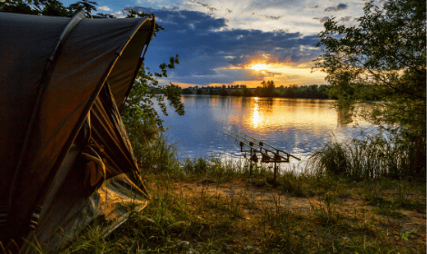 What is Specimen Carp Fishing - Camping gear and carp rods beside a lake with sunset