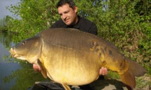 What is specimen Carp Fishing - Man with huge mirror carp