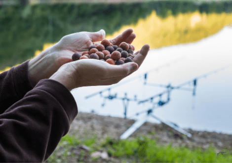 What is coarse fishing - man holding handful of boilies beside coarse fishing rods