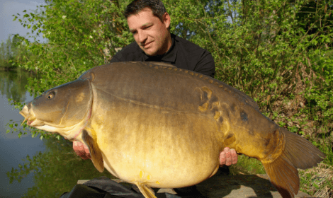 What is commercial Carp Fishing - Man with huge mirror carp
