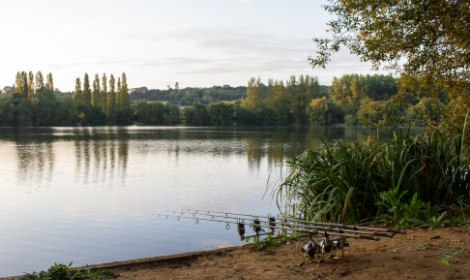 When are carp most active - carp rods in front of carp water in spring