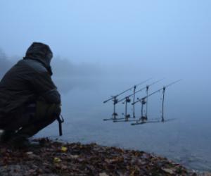 When do Carp Stop Feeding in Winter? – Guide to Catch Winter Carp